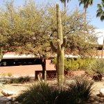 Photo de University of Arizona