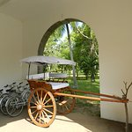 Photo de The Sanctuary At Tissawewa