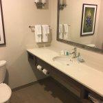 Hilton Garden Inn Dallas / Market Center Foto