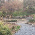 Photo de U.S. National Arboretum