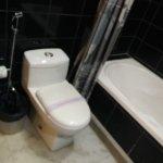WesternToilet & Bathtub