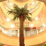 Palm Laung