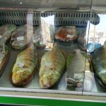 fresh fishes