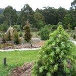 Gondwana Garden