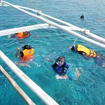 Apo Reef Natural Park: good for snorkling, best for scuba diving