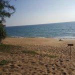 Photo de SALA Phuket Resort & Spa