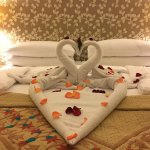 Housekeeping went beyond the call of duty!!