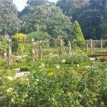 Victorian gardens 2