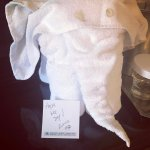 The housekeeper, Zinnia, left an elephant and a handwritten note!