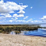 Foto de Lake Louisa State Park