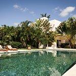 Lap Size swimming pool