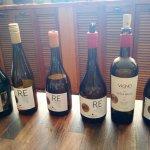 6 de los 7 vinos que incluye la cata
