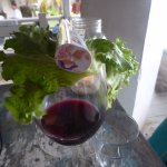 red wine protected from flies by lettuce leaf