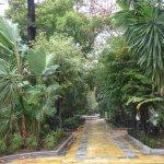 Foto de Parque de La Alameda