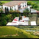 Casse croûte amélior au milei des célèbres vignes de la Côte Rôtie