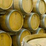 Commandaria Barrels at Lambouri Winery