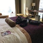Photo of Crowne Plaza Beijing Chaoyang U-Town