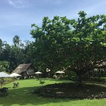 Bild från Nypa Style Resort Camiguin