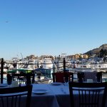 View into the marina from our table.