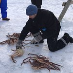 Photo of King Crab Excursion