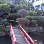 敷地の日本庭園
