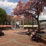 The Afjacent Plaza Central