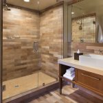 Premier Fireplace King or Two Queens bathroom shower option