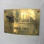 Photo of The Flame Tree Madeira