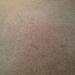 carpets in room