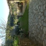 Photo of Agriturismo Podere Torre