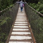 Lynn Canyon Park Suspension Bridge. Free fun for the kids. Would be a nice hike in good weather.