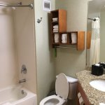 Hampton Inn and Suites Houston Medical Center - Reliant Park Foto