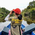 Birdwatching in the Tahuayo