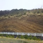 Geological Layers in Oshima
