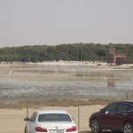 Ras Al Khor Flamingo Sanctuary Entrance