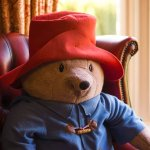 Paddington Bear always has a seat the lounge !