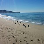 Redondo State Beach Foto
