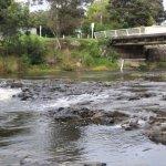 Haruru Falls 5