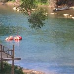 River Tubing Foto