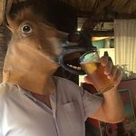 A horse walks into a bar and the bartender says 'Why such a long face?'
