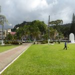 the lawn in the square