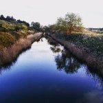 fiume ciane