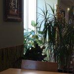 Photo of Thai Chili wok Bar Budapest
