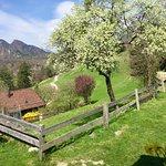 Photo of Heidi's Village