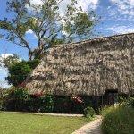 Photo de Banana Bank Lodge & Jungle Horseback Adventure