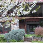 El jardín en primavera