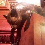 Another weird cat statue.
