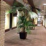 Couloir de l'hôtel pour accéder aux chambres