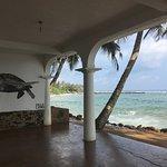 Photo of Palm Villa
