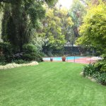 Beautiful lawn down to the sparkling swimming pool.